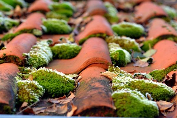 nettoyage toiture Aix en Provence