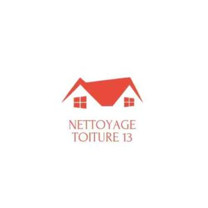 logo nettoyage de toiture 13